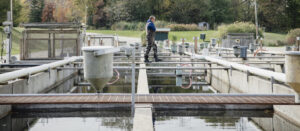 Water quality monitoring for aquaculture
