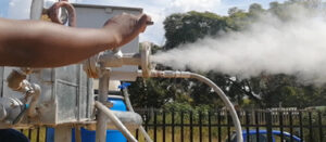 Solar Steam Distillation Technology in SA's Indigenous Oils Extraction